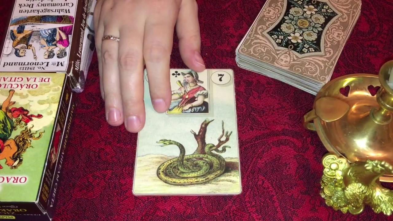Значение карт Ленорман в любовных раскладах - ТАРО